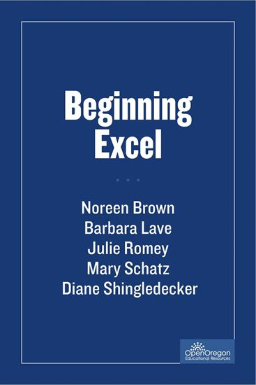 Picture of Beginning Excel
